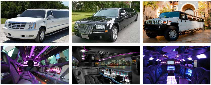 Wedding Transportation Party Bus Rental Honolulu